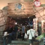Pet Safari in Ikano Power Center