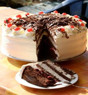 Cake Decorative Classes in Klang Valley