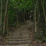 Bukit Jambul: Popular hiking place for Penangites