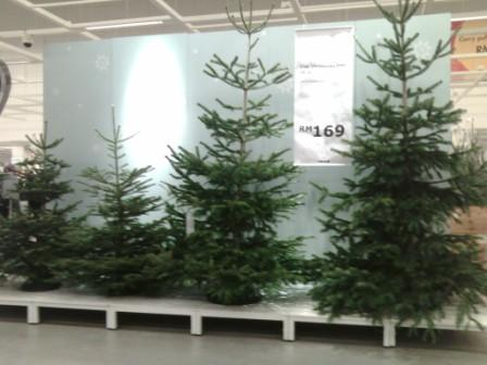 Ikea actually sells real Christmas trees | Update: Stop since 2016