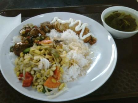 Nice vegetarian dishes from mixed rice stalls in Malaysia