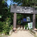Bukit Gasing hill for jungle trekking in Petaling Jaya